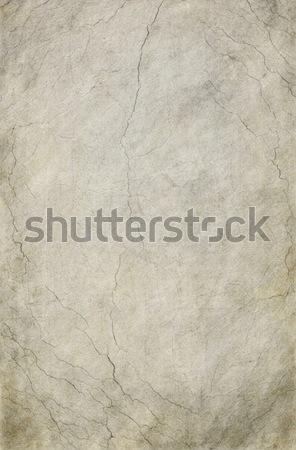 Cracked Gray Background Stock photo © newt96