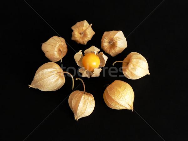 中国語 提灯 食用 果物 サークル ストックフォト © newt96