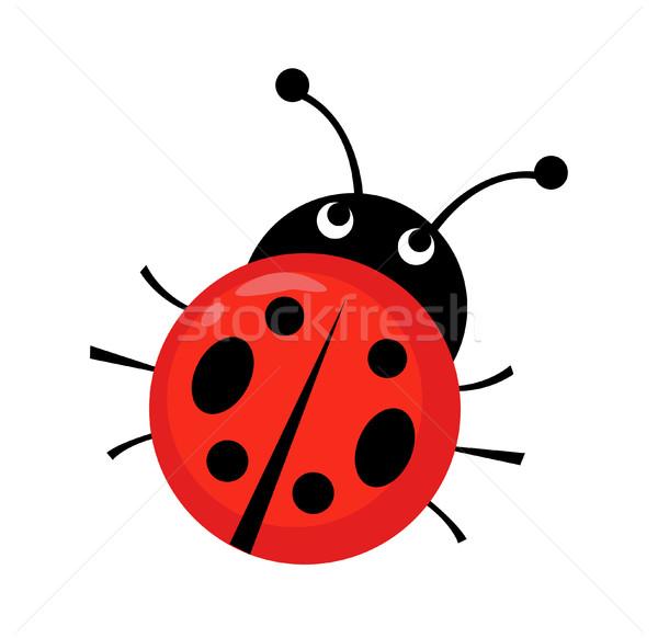 Mariquita color blanco insectos error escarabajo Foto stock © nezezon