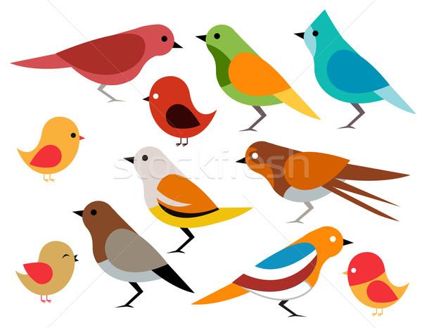 Foto stock: Conjunto · diferente · aves · criança · arte · azul