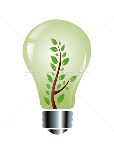ecology friendly light bulb Stock photo © nezezon