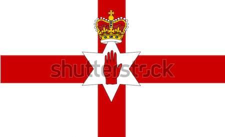 Vettore stile settentrionale Irlanda bandiera design Foto d'archivio © nezezon