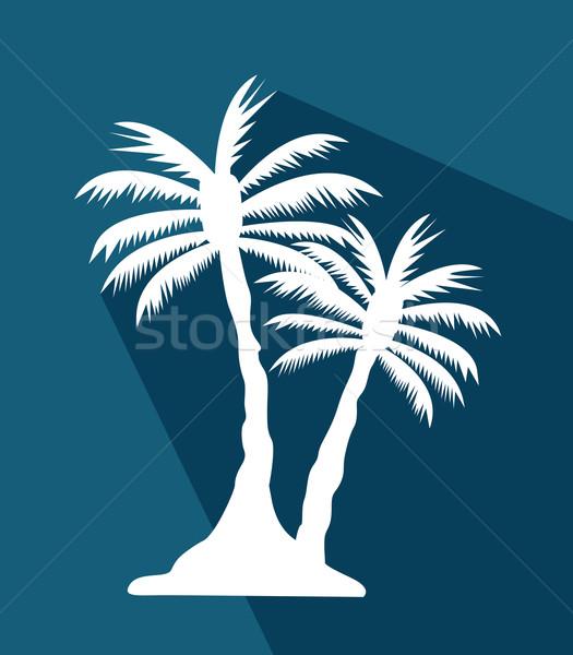 palm tree image Stock photo © nezezon
