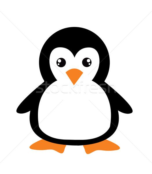 商业照片: 可爱 · 漫画 · 企鹅 ·白·爱·鱼