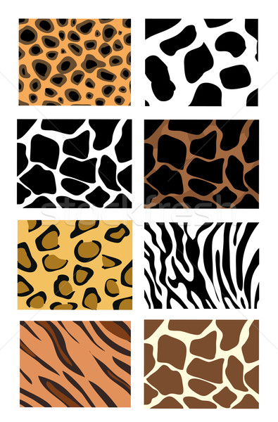 illustration of animal skin textures, background patterns Stock photo © nezezon
