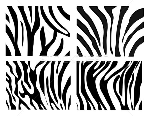 Zdjęcia stock: Zestaw · wektora · zebra · tekstury · czarno · białe · charakter