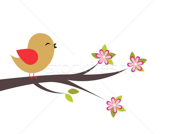 抽象的な 鳥 花 自然 葉 羽毛 ストックフォト © nezezon