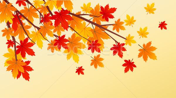 Nature rouge couleur usine modèle Photo stock © nezezon