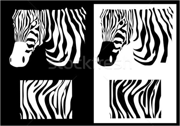 Vector zebra texture Black and White Stock photo © nezezon