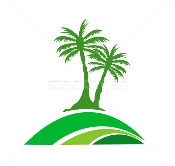 Palmier image mer jardin été Palm Photo stock © nezezon