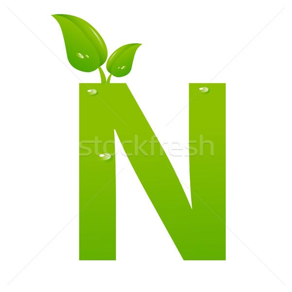Zöld öko n betű vektor tavasz ír Stock fotó © nezezon