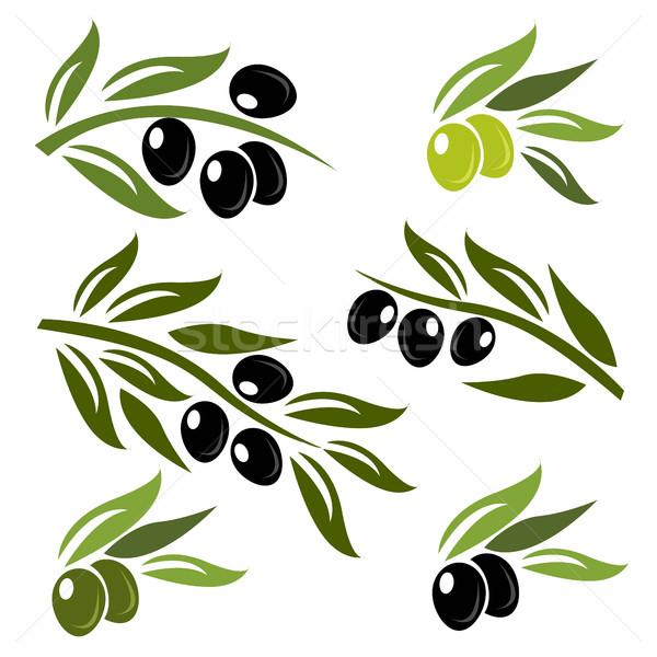 Yeşil siyah zeytin ayarlamak logo beyaz gıda Stok fotoğraf © nezezon