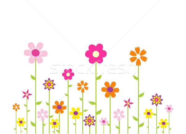 Colorful flowers Stock photo © nezezon