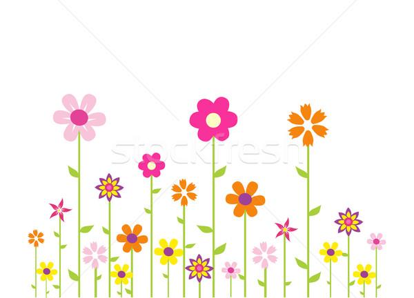 Photo stock / Fichier vectoriel Colorful flowers