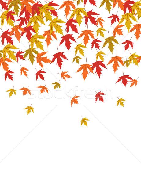 Foresta natura design foglia sfondo Foto d'archivio © nezezon