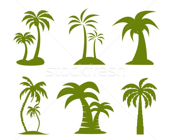 Palmeira imagem praia árvore folha palma Foto stock © nezezon