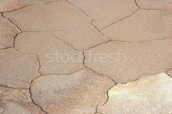 Opwarming van de aarde foto wat kan natuur hot Stockfoto © nialat