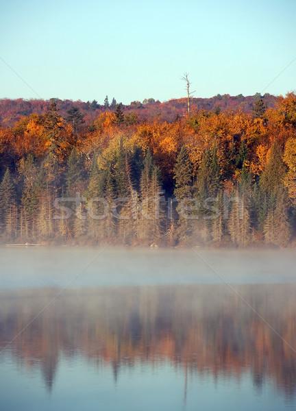 Paysage brouillard belle matin brouillard eau Photo stock © nialat