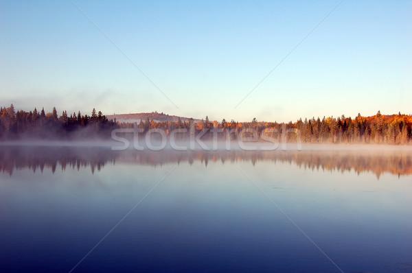 пейзаж тумана красивой утра туман деревья Сток-фото © nialat