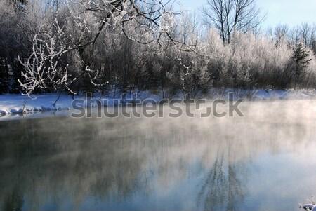 Kış manzara nehir soğuk Stok fotoğraf © nialat