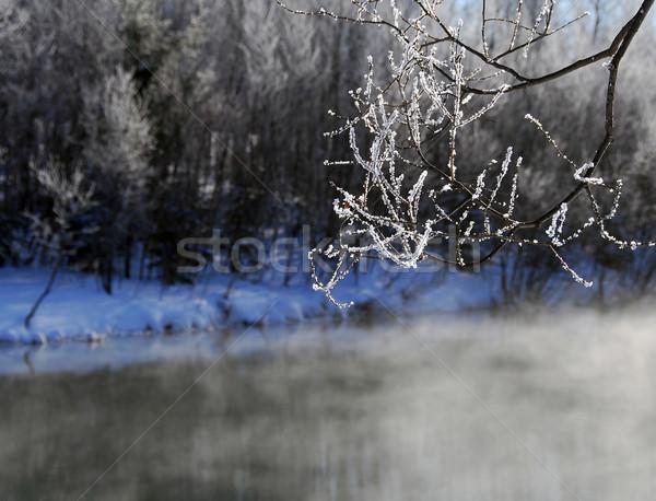 зима пейзаж туманный реке холодно Сток-фото © nialat