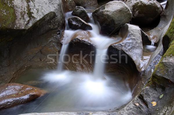 Küçük su resim dere orman dağ Stok fotoğraf © nialat