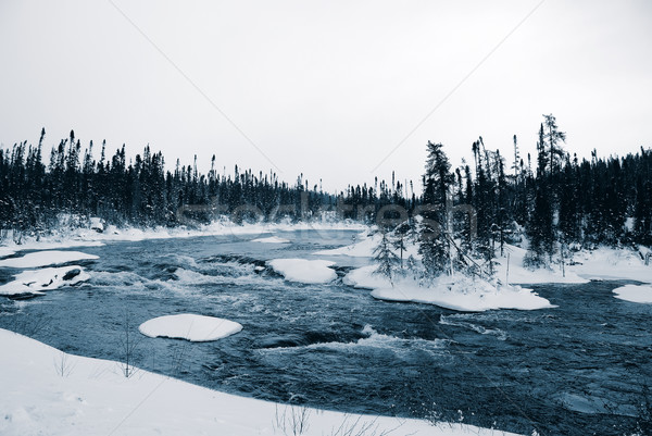 Winter blues landschap tonen mistig rivier Stockfoto © nialat