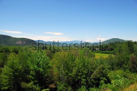 Mountain landscape Stock photo © nialat
