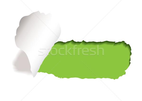 Zöld papír rés tép szakadt perem Stock fotó © nicemonkey