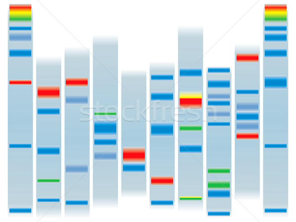 dna clear Stock photo © nicemonkey