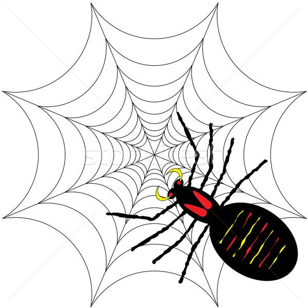 spider Stock photo © nicemonkey