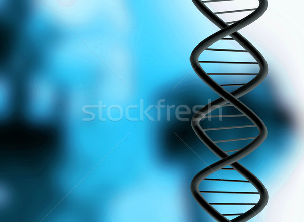 dna structure Stock photo © nicemonkey