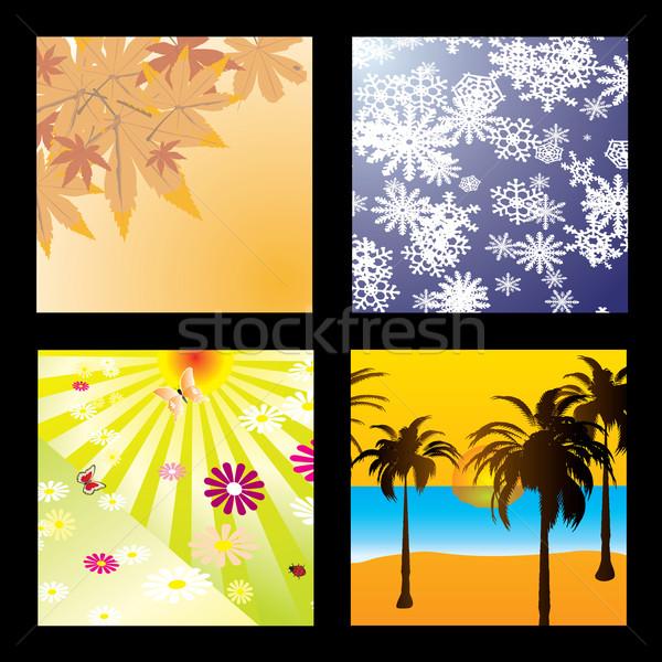 Sezon cztery pory roku jeden obraz cztery Zdjęcia stock © nicemonkey