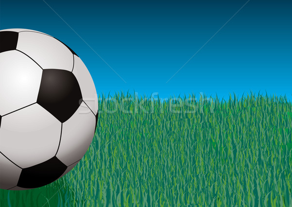 football giant Stock photo © nicemonkey