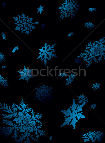snowflake fall Stock photo © nicemonkey