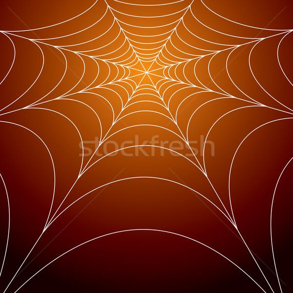 spooky spiders web Stock photo © nicemonkey