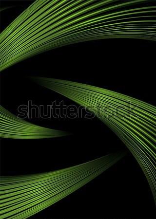 green strand Stock photo © nicemonkey