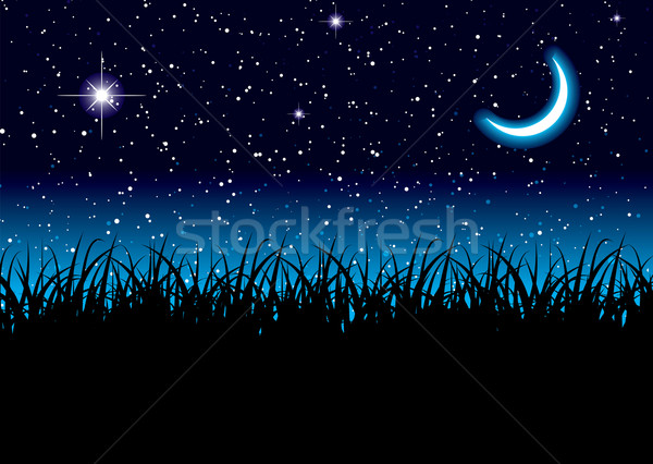 Moon space grass Stock photo © nicemonkey