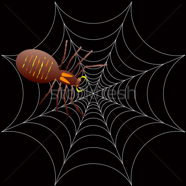 halloween spooky spider Stock photo © nicemonkey