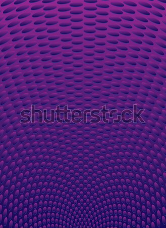 purple radiate Stock photo © nicemonkey