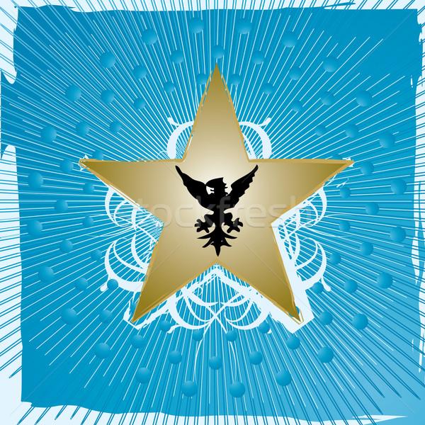 golden star Stock photo © nicemonkey