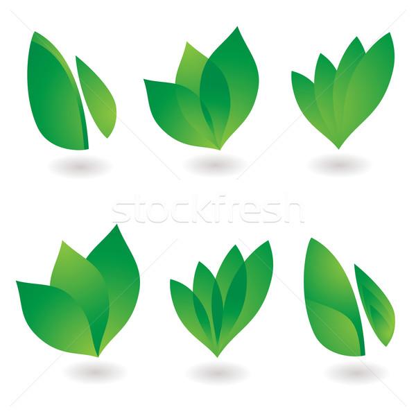 Liści ikona kolekcja sześć środowiskowy projekty Zdjęcia stock © nicemonkey
