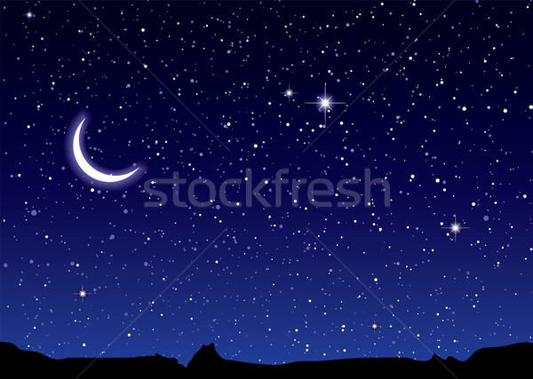 Space landscape moon Stock photo © nicemonkey