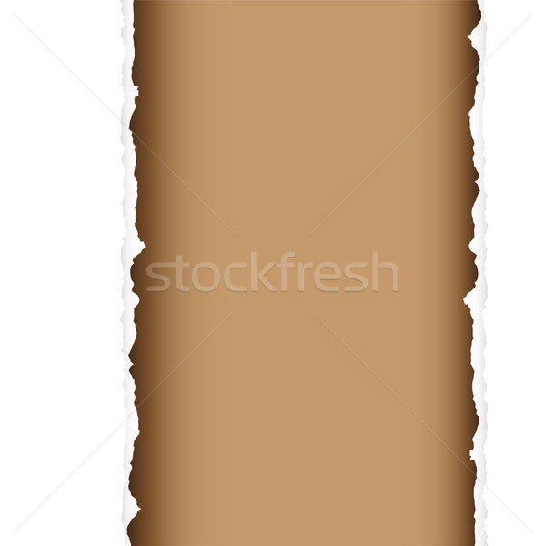 brown tear divide Stock photo © nicemonkey