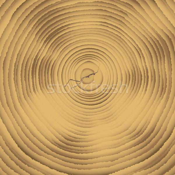 древесины поперечное сечение рубленый вниз дерево роста Сток-фото © nicemonkey