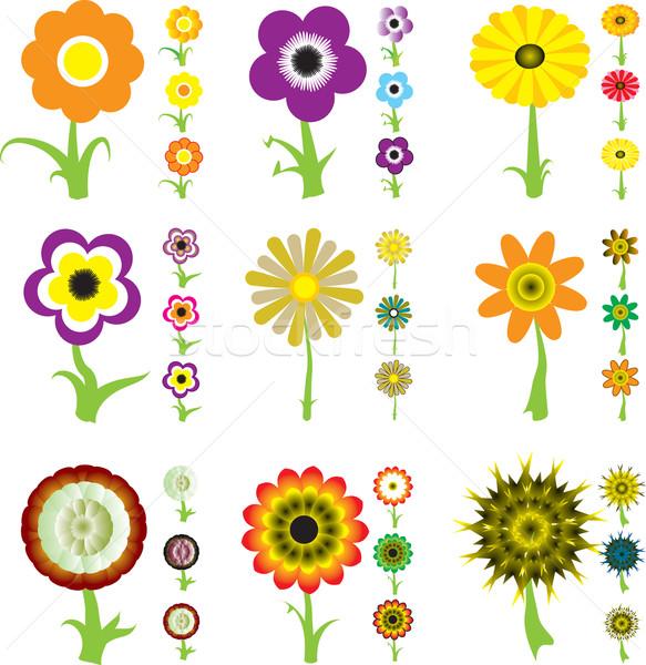 Fleur variation ensemble neuf dessins trois Photo stock © nicemonkey