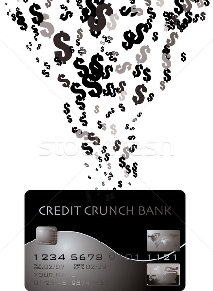 credit card dollar Stock photo © nicemonkey