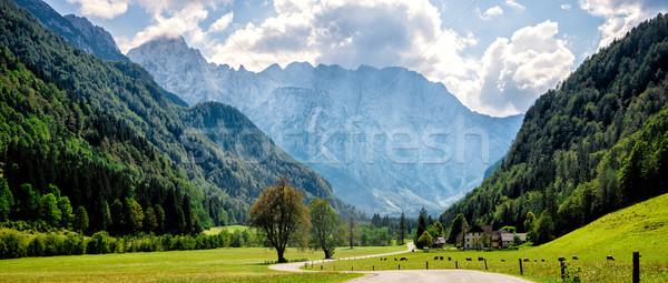 Weg alpen Slovenië huis boom muur Stockfoto © Nickolya