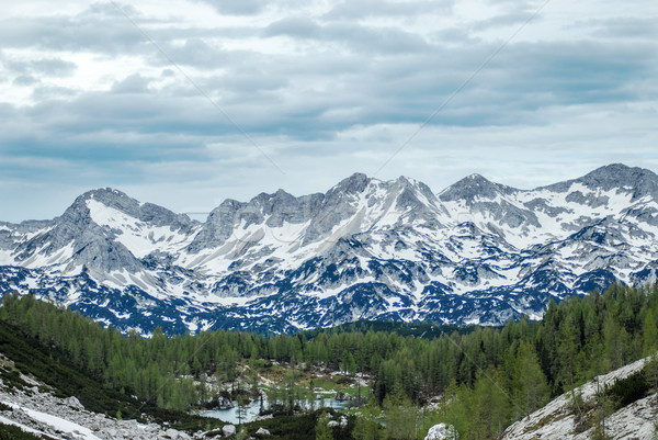 Bergen landschap blauwe hemel sneeuw gras weg Stockfoto © Nickolya