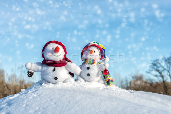 Couple of snowmen Stock photo © Nickolya